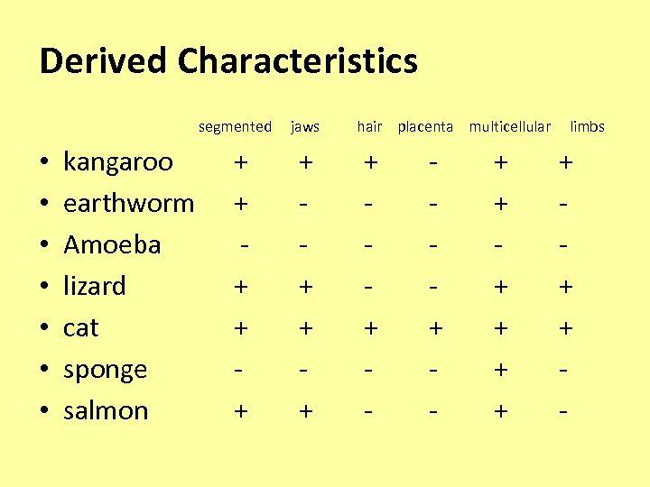 Derived Characteristics segmented jaws hair placenta multicellular limbs • • kangaroo earthworm Amoeba lizard