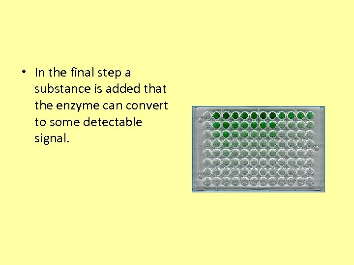 • In the final step a substance is added that the enzyme can