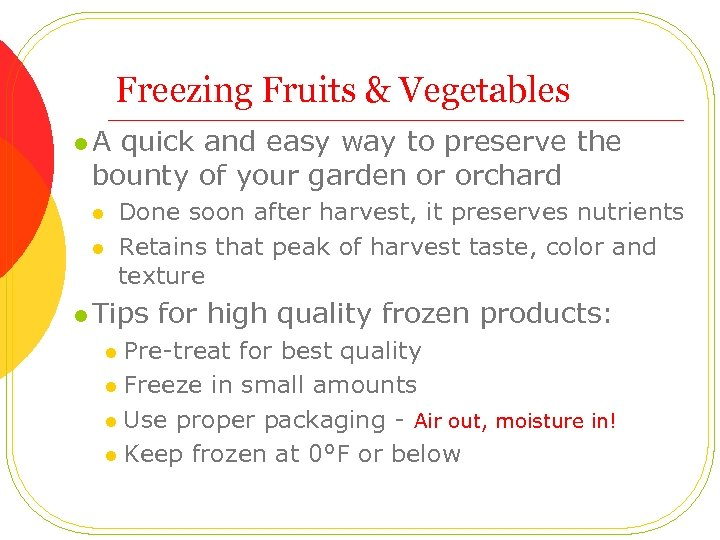 Freezing Fruits & Vegetables l A quick and easy way to preserve the bounty