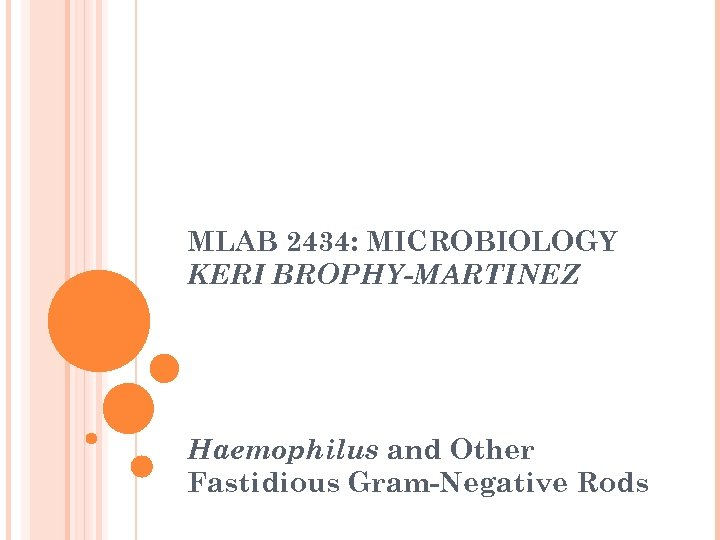 MLAB 2434: MICROBIOLOGY KERI BROPHY-MARTINEZ Haemophilus and Other Fastidious Gram-Negative Rods