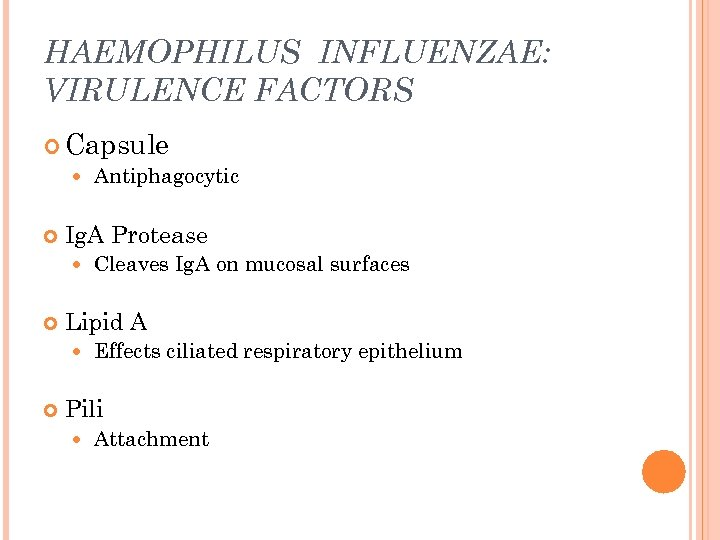 HAEMOPHILUS INFLUENZAE: VIRULENCE FACTORS Capsule Antiphagocytic Ig. A Protease Lipid A Cleaves Ig. A