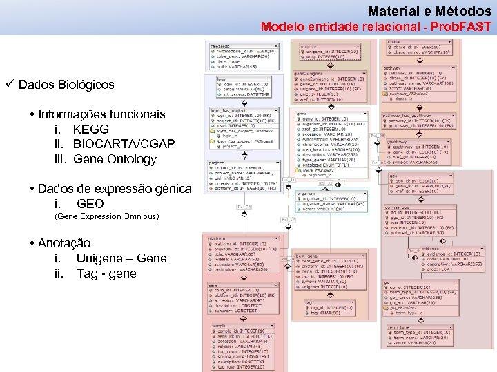Material e Métodos Modelo entidade relacional - Prob. FAST ü Dados Biológicos • Informações
