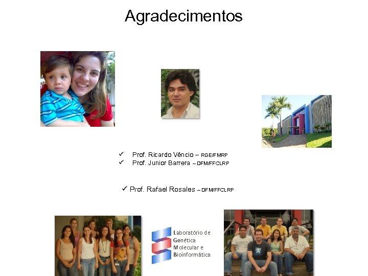 Agradecimentos ü ü Prof. Ricardo Vêncio – RGE/FMRP Prof. Junior Barrera – DFM/FFCLRP ü