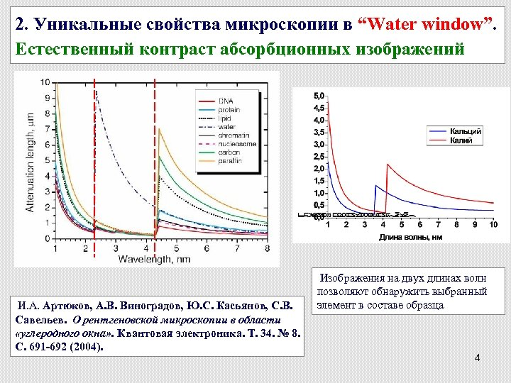 """2. Уникальные свойства микроскопии в """"Water window"""". Естественный контраст абсорбционных изображений И. А. Артюков,"""