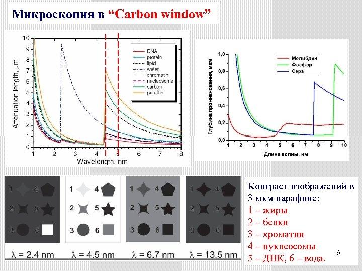 """Микроскопия в """"Carbon window"""" Контраст изображений в 3 мкм парафине: 1 – жиры 2"""