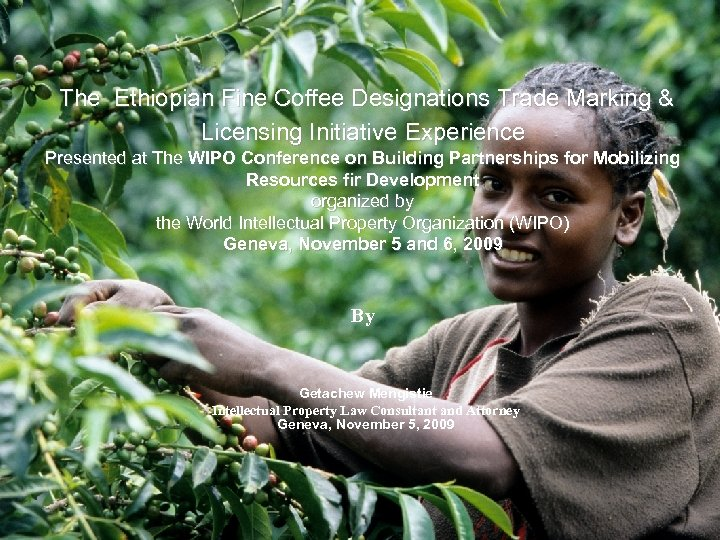 The Ethiopian Fine Coffee Designations Trade Marking & Licensing Initiative Experience Presented at The