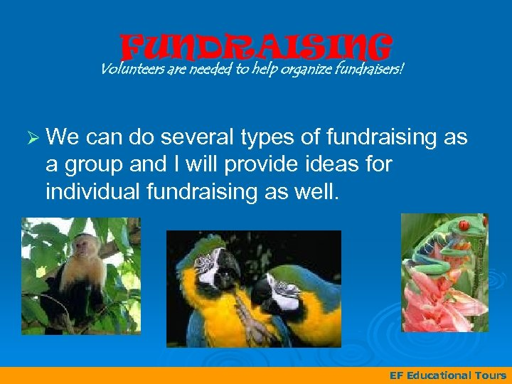 FUNDRAISING Volunteers are needed to help organize fundraisers! Ø We can do several types