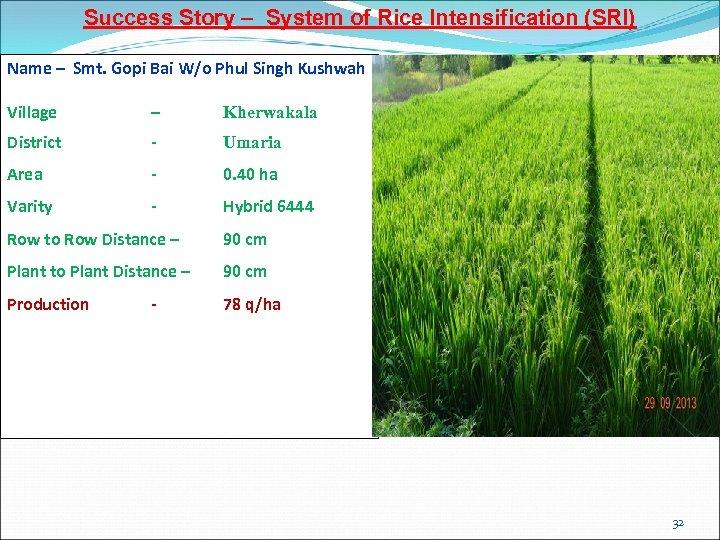 Success Story – System of Rice Intensification (SRI) Name – Smt. Gopi Bai W/o