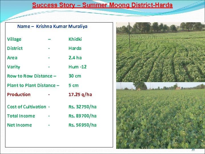 Success Story – Summer Moong District-Harda Name – Krishna Kumar Muraliya Village – Khidki