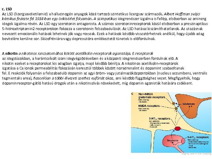 c. LSD Az LSD (lizergsavdietilamid) a hallucinogén anyagok közé tartozó szintetikus lizergsav származék. Albert