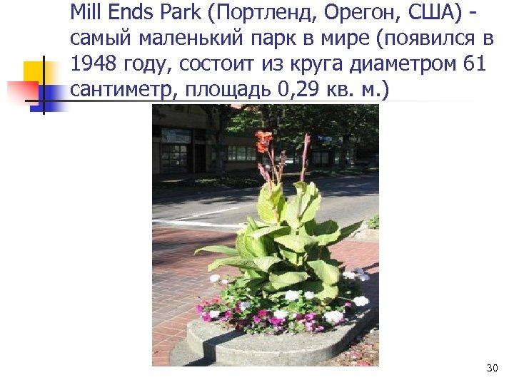 Mill Ends Park (Портленд, Орегон, США) самый маленький парк в мире (появился в 1948