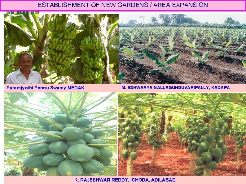ESTABLISHMENT OF NEW GARDENS / AREA EXPANSION Paramjyothi Ponnu Swamy MEDAK M. ESHWARYA NALLAGUNDUVARIPALLY,