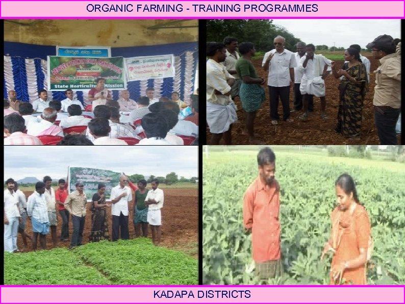 ORGANIC FARMING - TRAINING PROGRAMMES KADAPA DISTRICTS