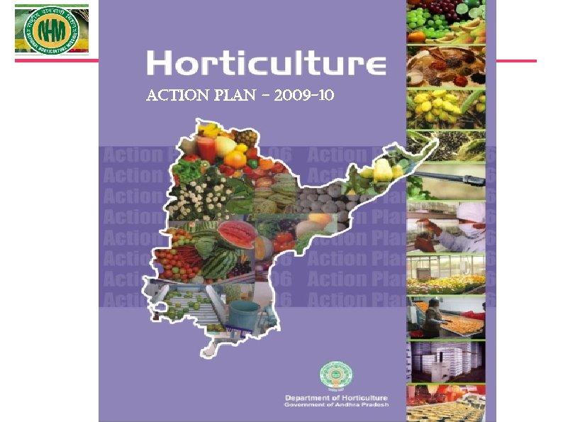 ACTION PLAN – 2009 -10