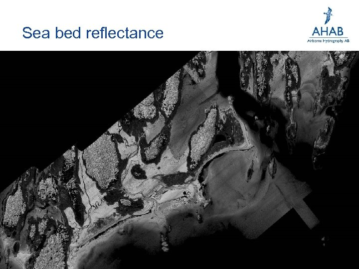 Sea bed reflectance
