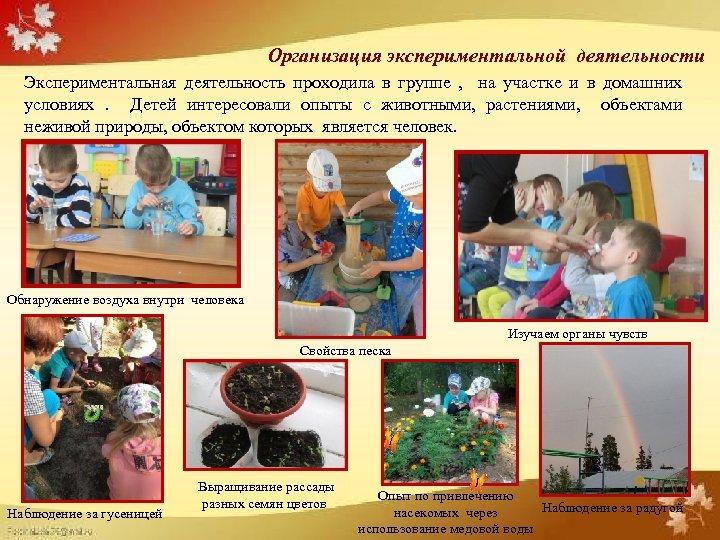 Организация экспериментальной деятельности Экспериментальная деятельность проходила в группе , на участке и в домашних