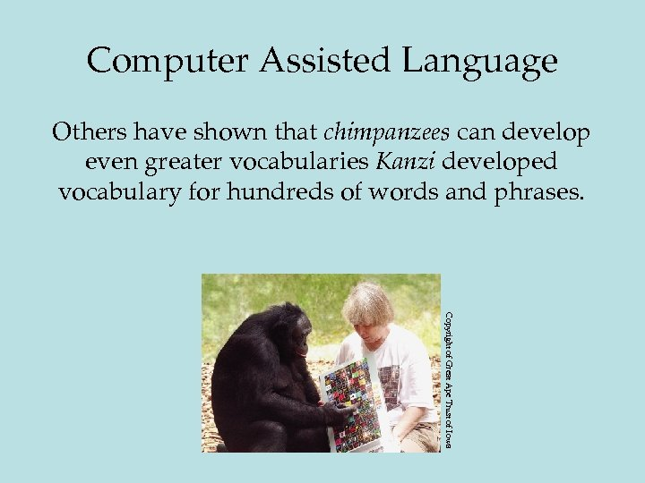 Computer Assisted Language Others have shown that chimpanzees can develop even greater vocabularies Kanzi