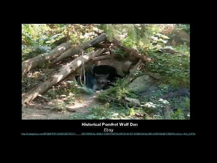 Historical Pomfret Wolf Den Ebay http: //i. ebayimg. com/t/POMFRET-CONNECTICUT- HISTORICAL-WOLF-DEN-POSTCARD-B-W-CT-/00/$(KGr. Hq. YOKo 8 E