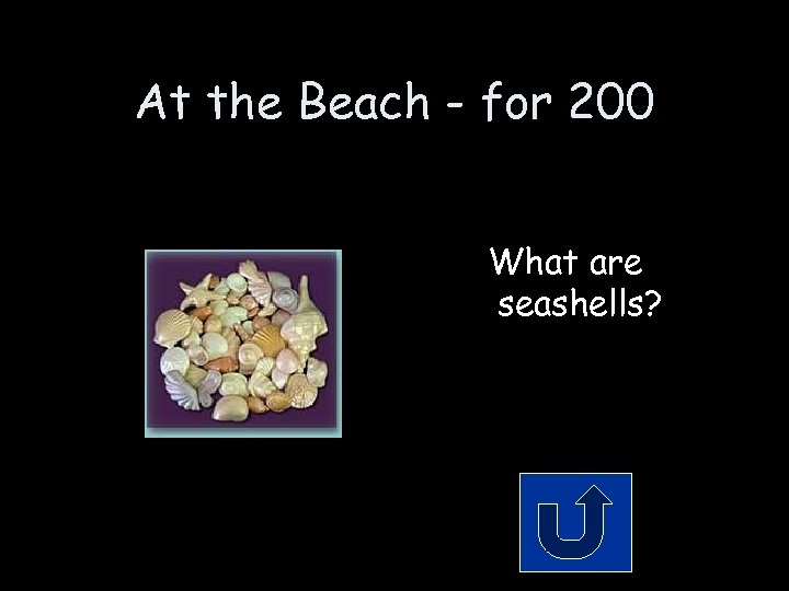 At the Beach - for 200 What are seashells?