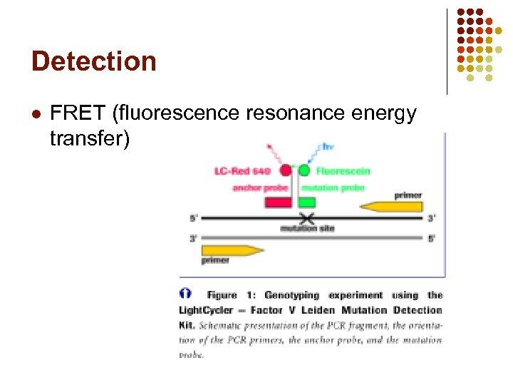 Detection l FRET (fluorescence resonance energy transfer)