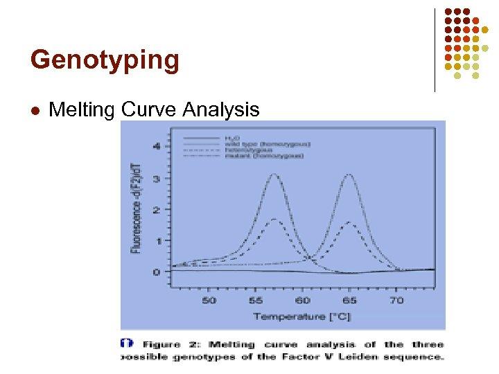 Genotyping l Melting Curve Analysis