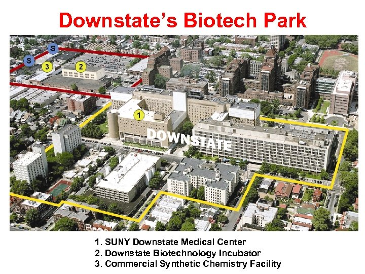 Downstate's Biotech Park 1. SUNY Downstate Medical Center 2. Downstate Biotechnology Incubator 3. Commercial