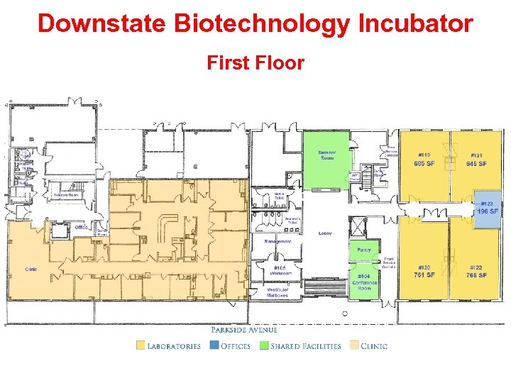 Downstate Biotechnology Incubator First Floor
