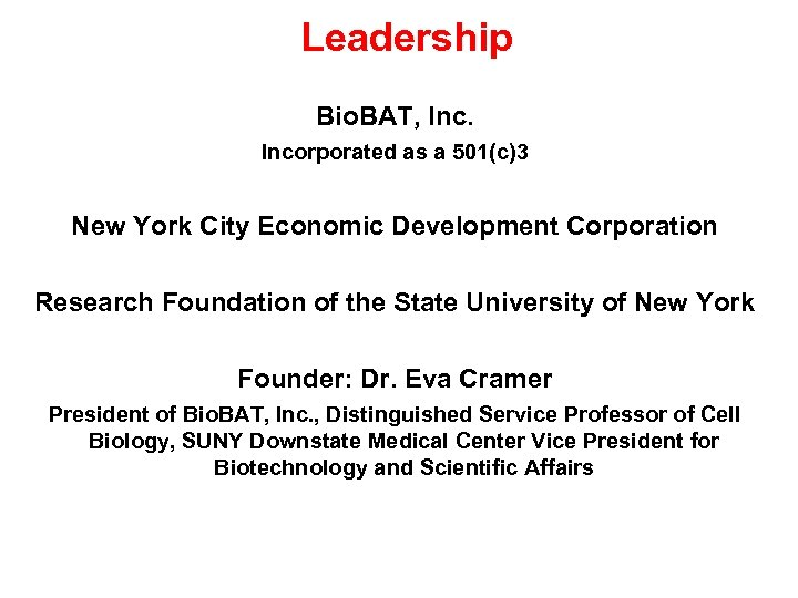 Leadership Bio. BAT, Incorporated as a 501(c)3 New York City Economic Development Corporation Research