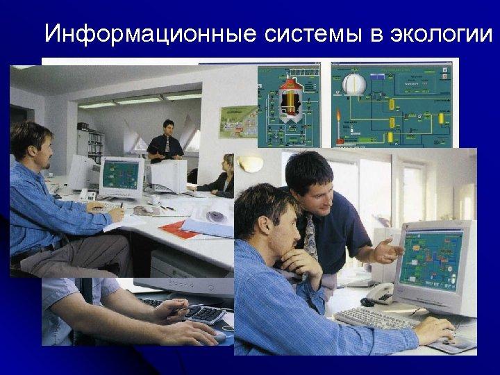 Информационные системы в экологии