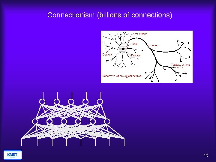 Connectionism (billions of connections) 15