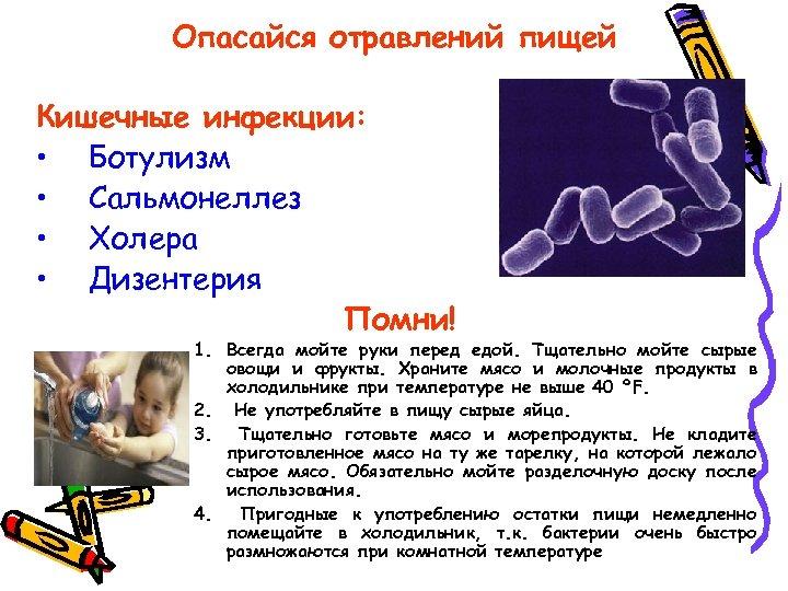 Опасайся отравлений пищей Кишечные инфекции: • Ботулизм • Сальмонеллез • Холера • Дизентерия Помни!