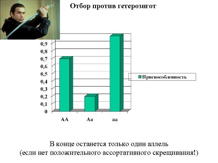 Отбор против гетерозигот В конце останется только один аллель (если нет положительного ассортативного скрещивания!)