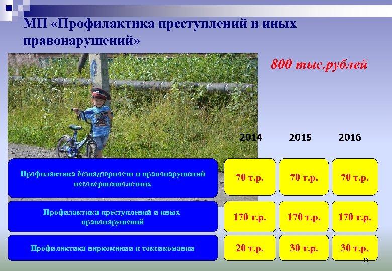 МП «Профилактика преступлений и иных правонарушений» 800 тыс. рублей 2014 2015 2016 Профилактика безнадзорности