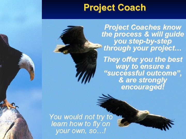 Project Coaches know the process & will guide you step-by-step through your project… They