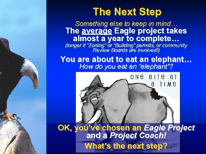The Next Step Something else to keep in mind… The average Eagle project takes