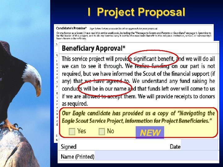 I Project Proposal NEW