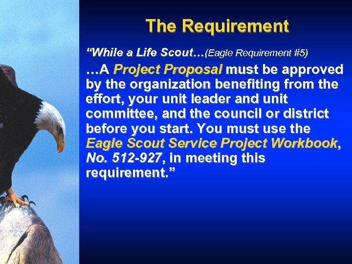 """The Requirement """"While a Life Scout…(Eagle Requirement #5) …A Project Proposal must be approved"""