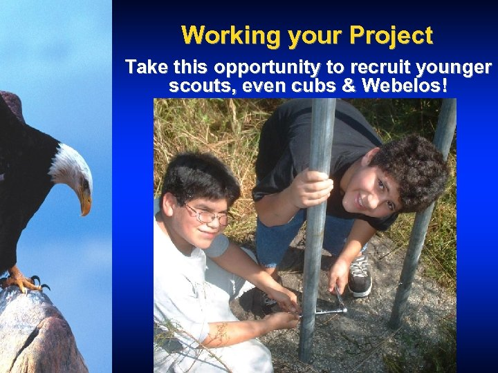 Working your Project Take this opportunity to recruit younger scouts, even cubs & Webelos!