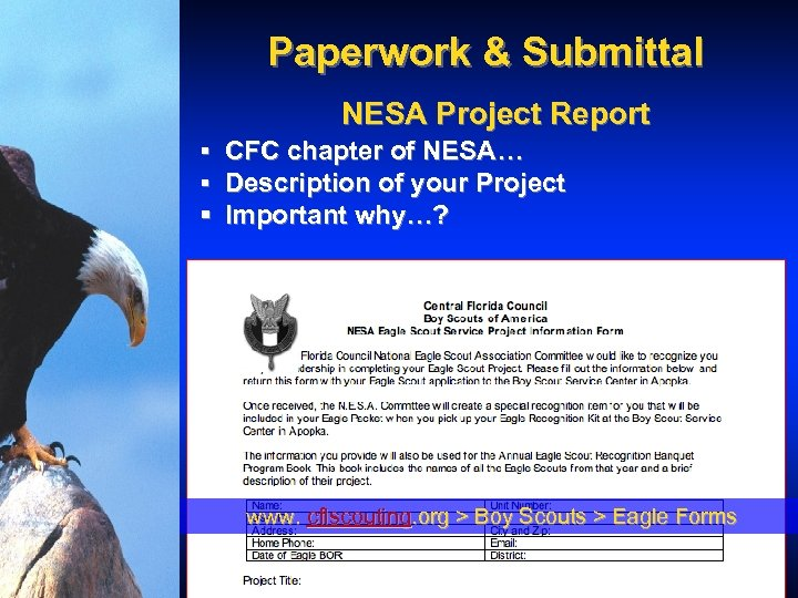 Paperwork & Submittal NESA Project Report § CFC chapter of NESA… § Description of