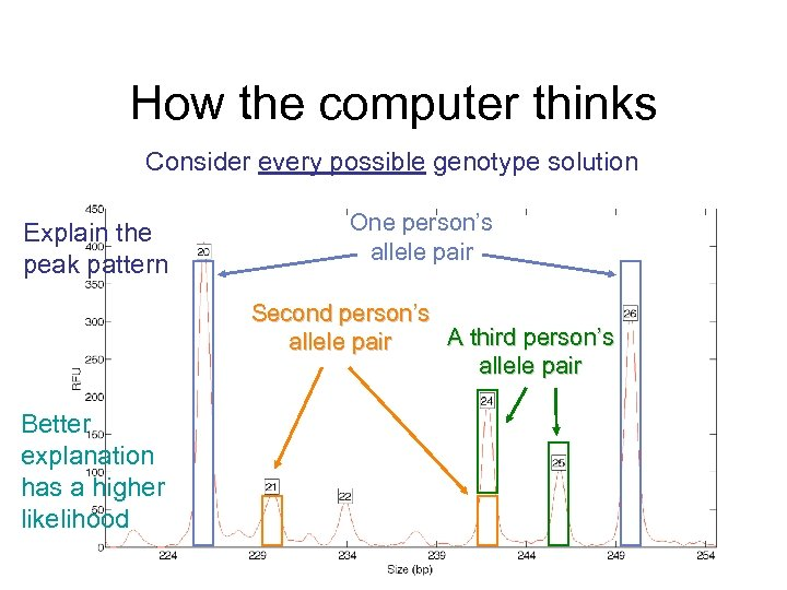 How the computer thinks Consider every possible genotype solution Explain the peak pattern One