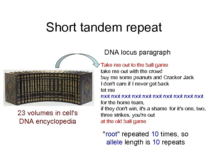 Short tandem repeat DNA locus paragraph 23 volumes in cell's DNA encyclopedia Take me