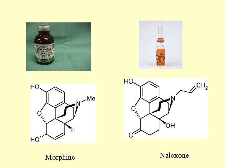 Morphine Naloxone