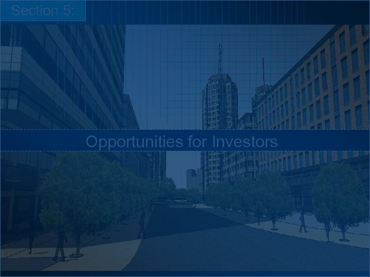 Section 5: Opportunities for Investors