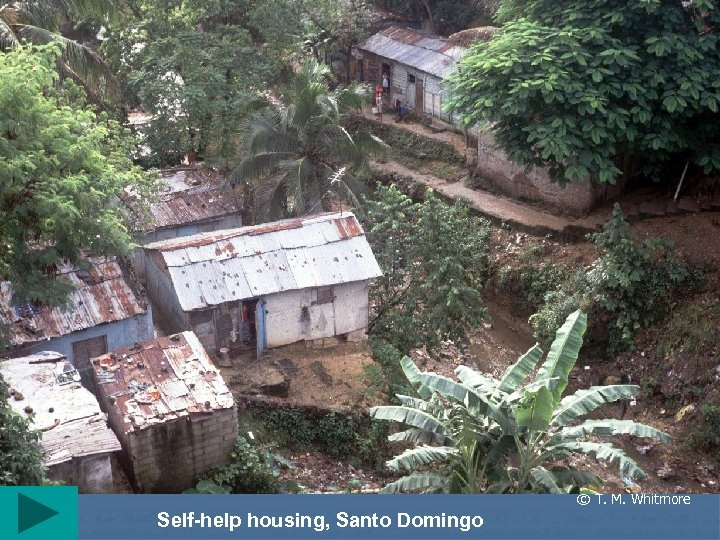 © T. M. Whitmore Self-help housing, Santo Domingo