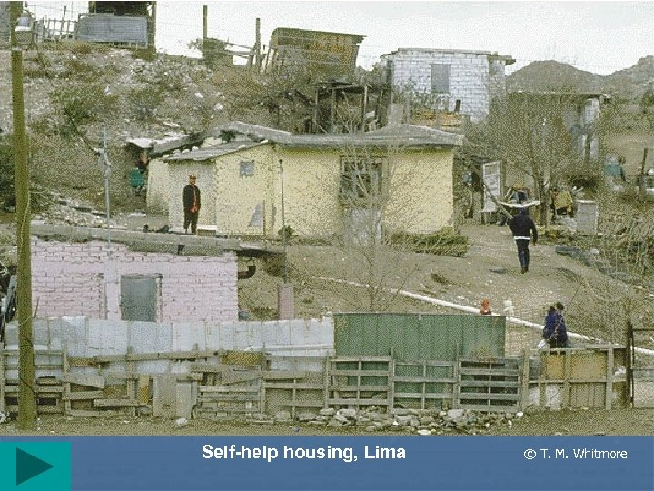 Self-help housing, Lima © T. M. Whitmore