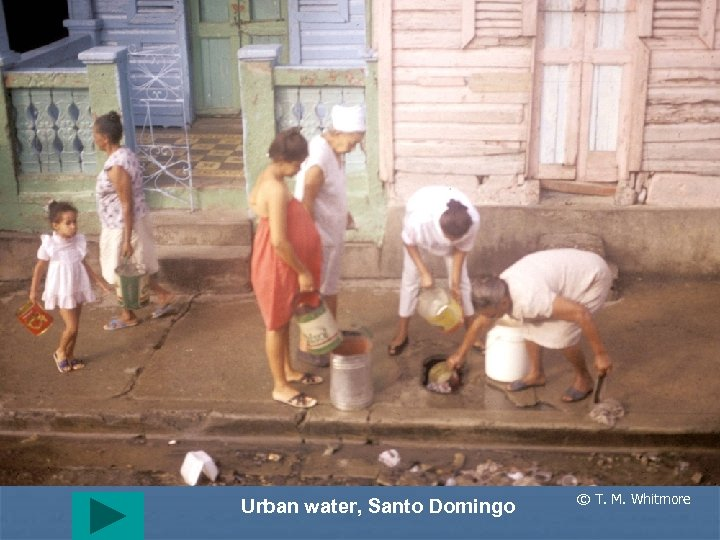 Urban water, Santo Domingo © T. M. Whitmore