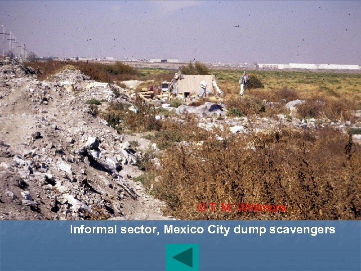 Informal sector, Mexico City dump scavengers