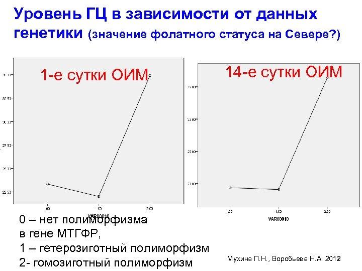 Уровень ГЦ в зависимости от данных генетики (значение фолатного статуса на Севере? ) 1