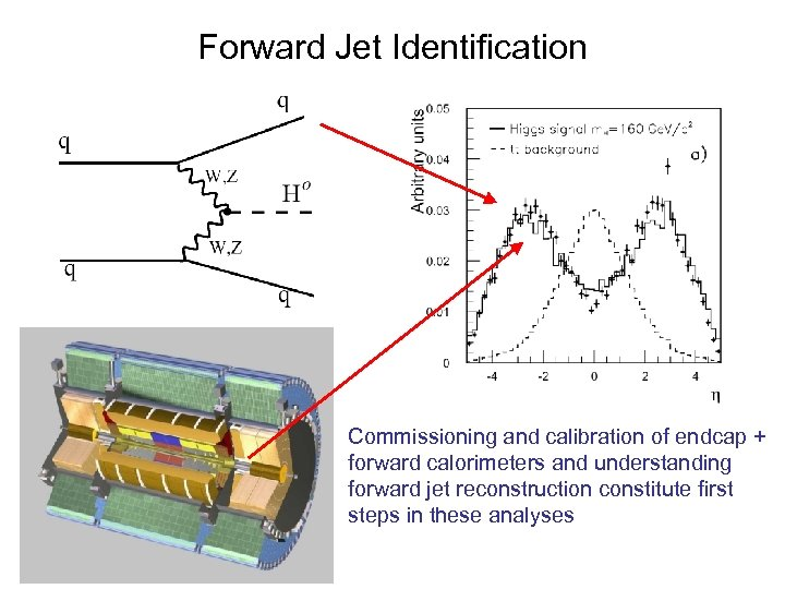 Forward Jet Identification Commissioning and calibration of endcap + forward calorimeters and understanding forward