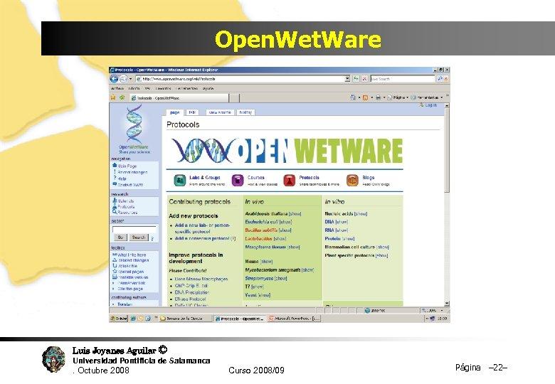 Open. Wet. Ware Luis Joyanes Aguilar © Universidad Pontificia de Salamanca. Octubre 2008 Curso